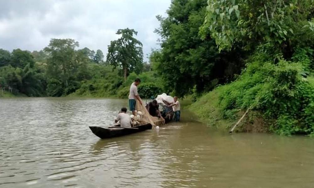 দীর্ঘ চার মাস পর শুরু হয়েছে কাপ্তাই হ্রদে মাছ আহরণ